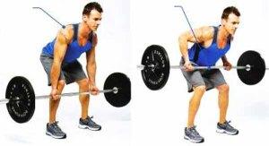 exercicio-remada-curvada-supinada