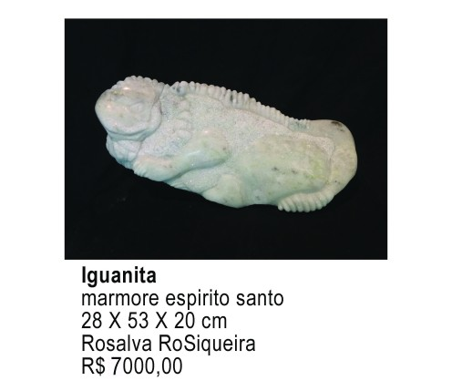 iguanita_ RO SIQUEIRA